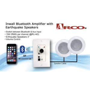 Bluetooth amp and Speaker